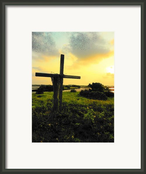 The Son And Sunset Framed Print By Sheri Mcleroy