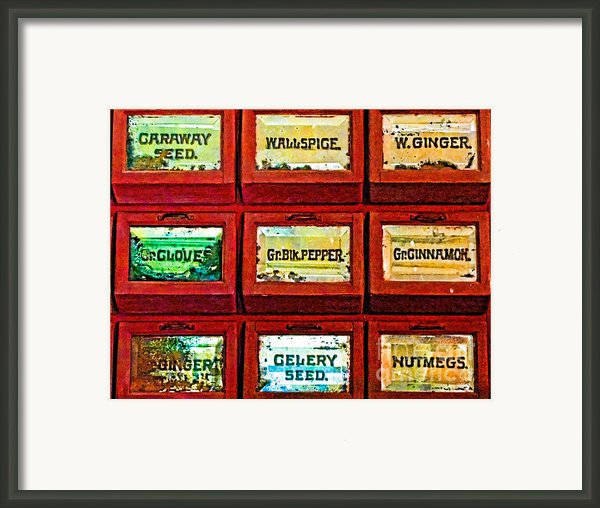 The Spice Of Life Framed Print By Colleen Kammerer