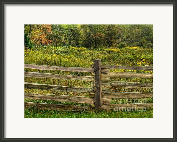 The Split Rail Meadow Framed Print By Benanne Stiens