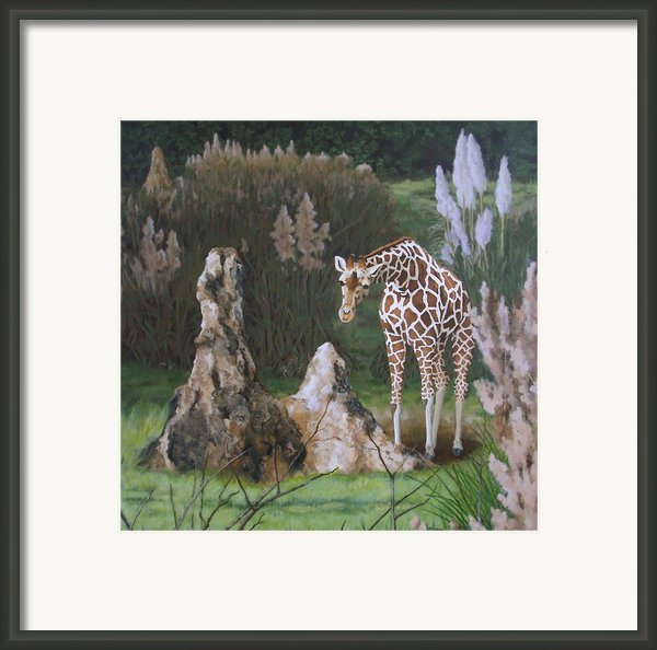 The Termite Mounds Framed Print By Sandra Chase