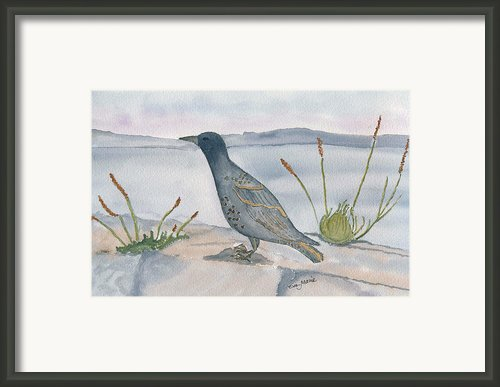 The Trush Framed Print By Eva Ason
