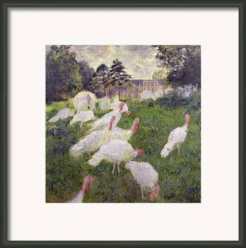 The Turkeys At The Chateau De Rottembourg Framed Print By Claude Monet