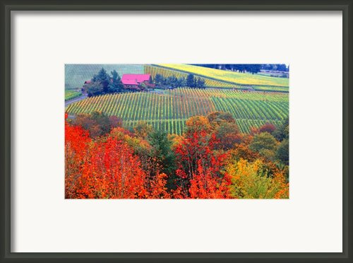 The View From Red Ridge Framed Print By Margaret Hood