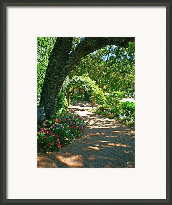 The Vineyard Walk Framed Print By Sotiri Catemis
