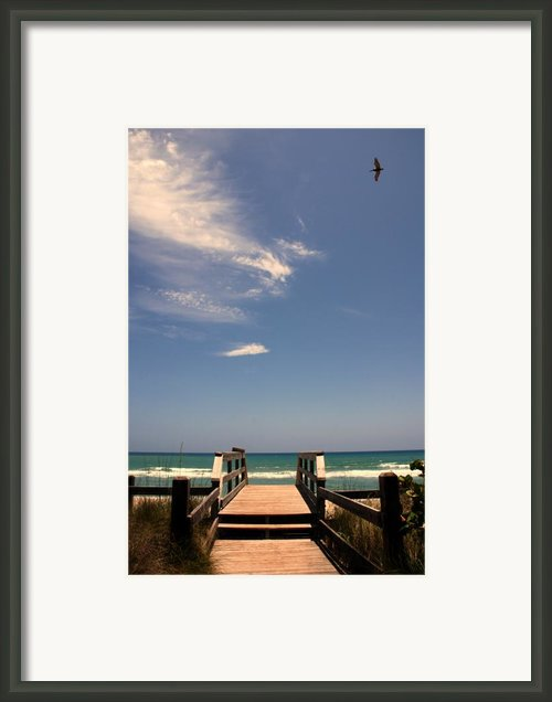 The Way Out To The Beach Framed Print By Susanne Van Hulst