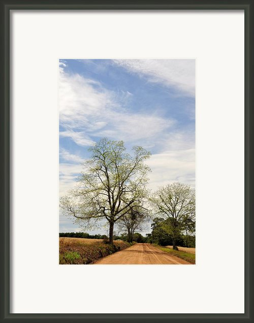 The Way There Framed Print By Jan Amiss Photography