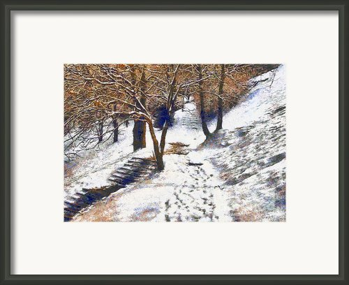The Winter Park Framed Print By Odon Czintos
