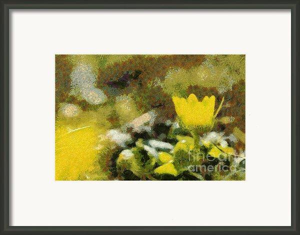 The Yellow Flower Framed Print By Odon Czintos