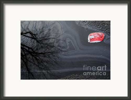 Thirsty Framed Print By Luke Moore