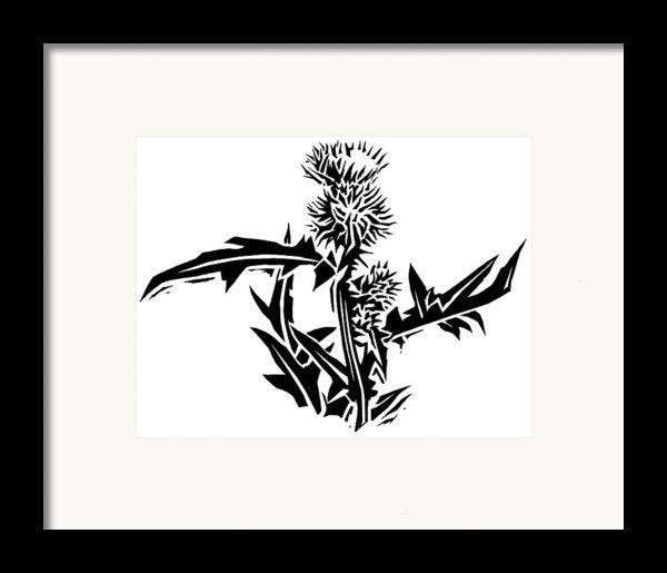 Thistle, Lino Print Framed Print By Gary Hincks