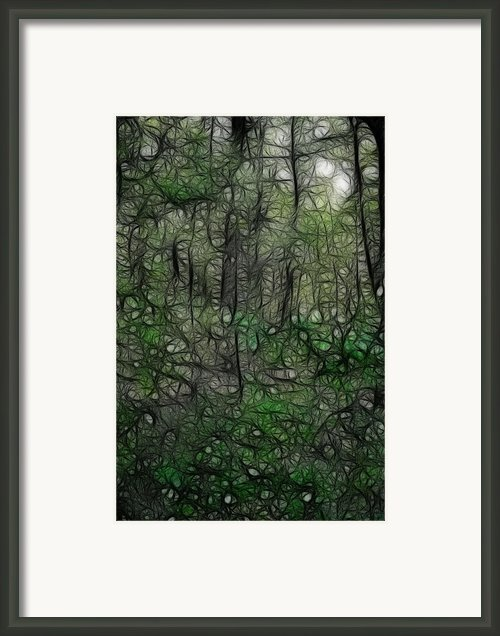 Thoreau Woods Fractal Framed Print By Lawrence Christopher