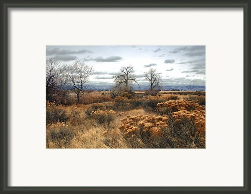 Three Brothers Framed Print By James Steele