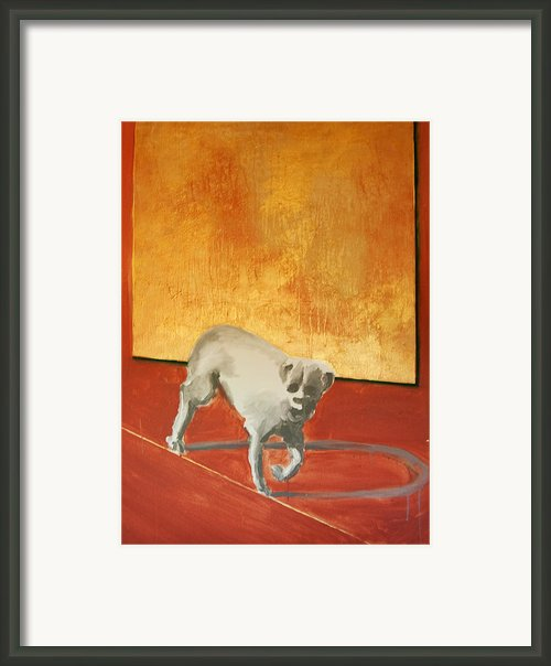 Three Legged Dog Framed Print By Jea Devoe