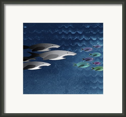 Three Sharks Chasing A School Of Fish Framed Print By Jutta Kuss