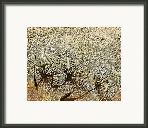 Three Wishes Framed Print By Artist And Photographer Laura Wrede