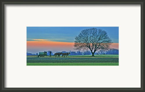 Through The Fields Framed Print By Scott Mahon