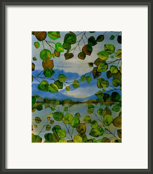 Thru The Aspen Framed Print By Carolyn Doe