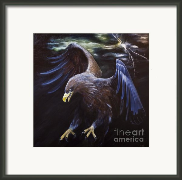 Thunder Framed Print By Julie Bond