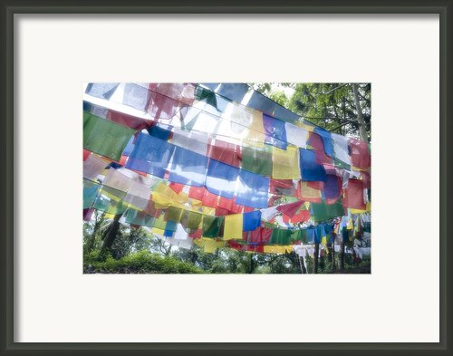 Tibetan Buddhist Prayer Flags Framed Print By Glen Allison