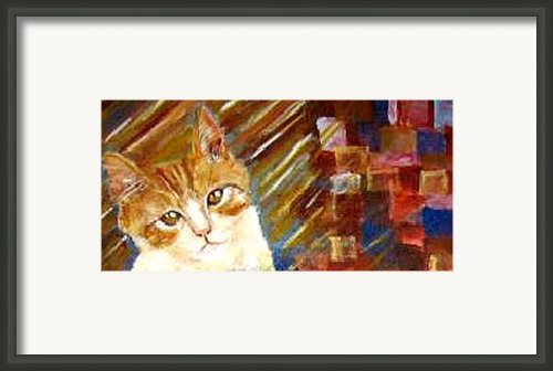Tiger Sasha Framed Print By Patty Meotti