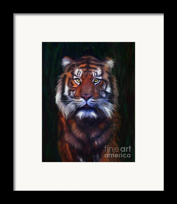 Tiger Tiger Framed Print By Michelle Wrighton
