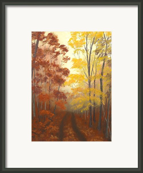 Timber Road Framed Print By Garry Mcmichael