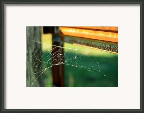 Time And Patience Framed Print By Rebecca Sherman