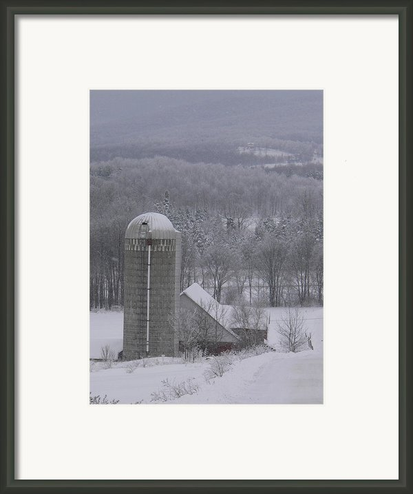 Tinted Winter Framed Print By Natalie Larocque