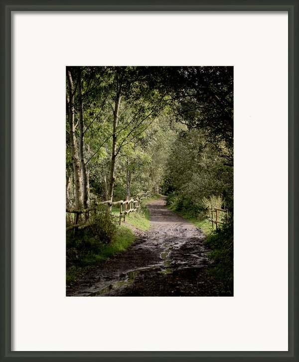 To The End Of September Framed Print By Odd Jeppesen