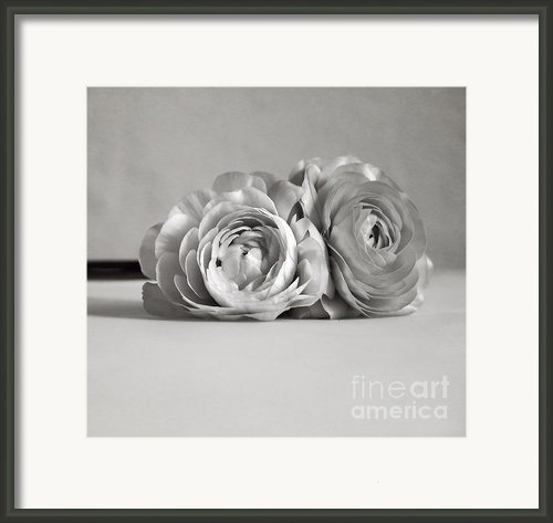 Together Framed Print By Kristin Kreet