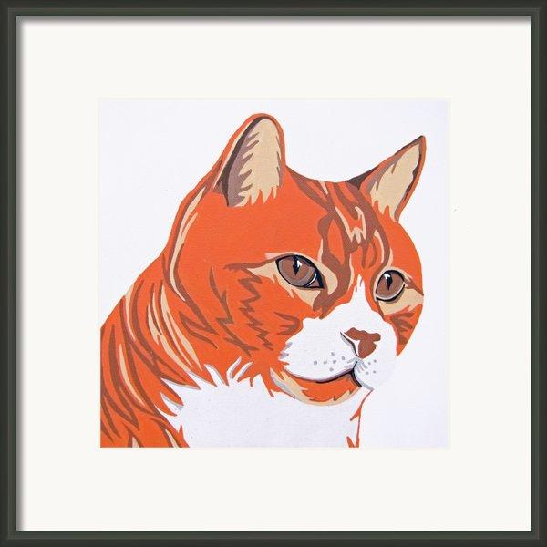 Tom Cat Framed Print By Slade Roberts