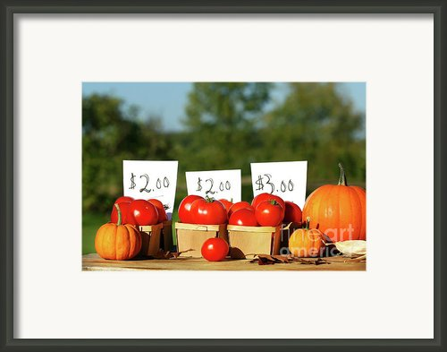 Tomatoes For Sale Framed Print By Sandra Cunningham