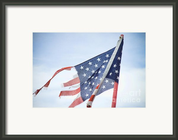 Torn American Flag Framed Print By James Bo Insogna