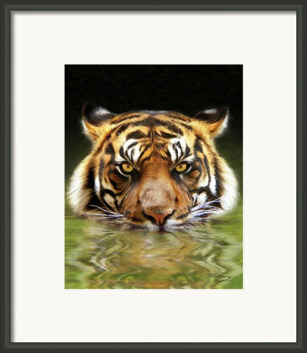 Torrent Framed Print By Bill Fleming
