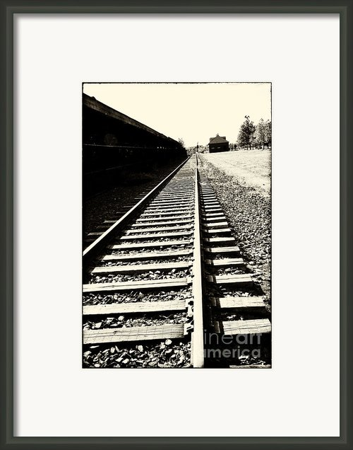 Tracks Of Our Ancestors Framed Print By Leslie Leda