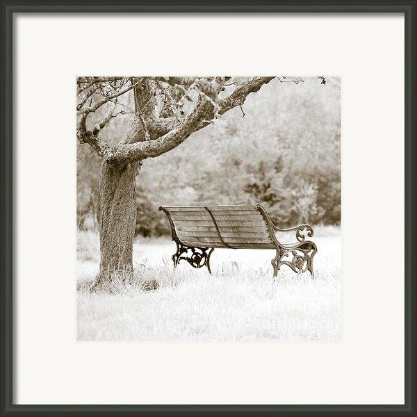 Tranquility Framed Print By Frank Tschakert