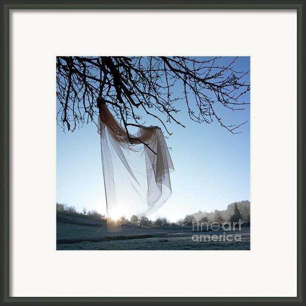 Transparent Fabric Framed Print By Bernard Jaubert