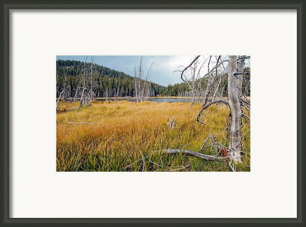 Trap Lake Co Framed Print By James Steele