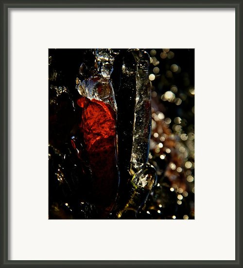 Treasure Framed Print By Odd Jeppesen