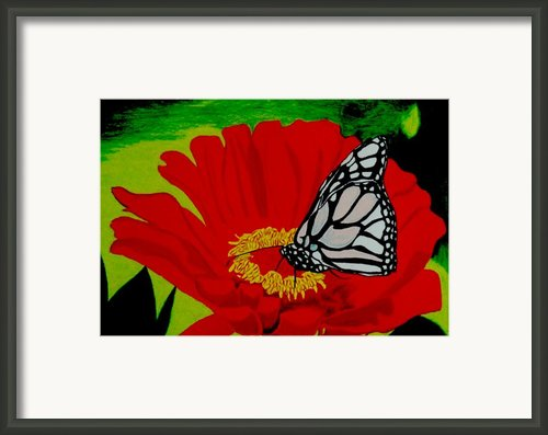 Treasures Framed Print By Ramneek Narang
