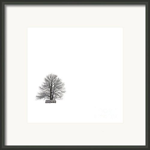 Tree Isolated Under The Snow In The Middle Field In Winter. Framed Print By Bernard Jaubert