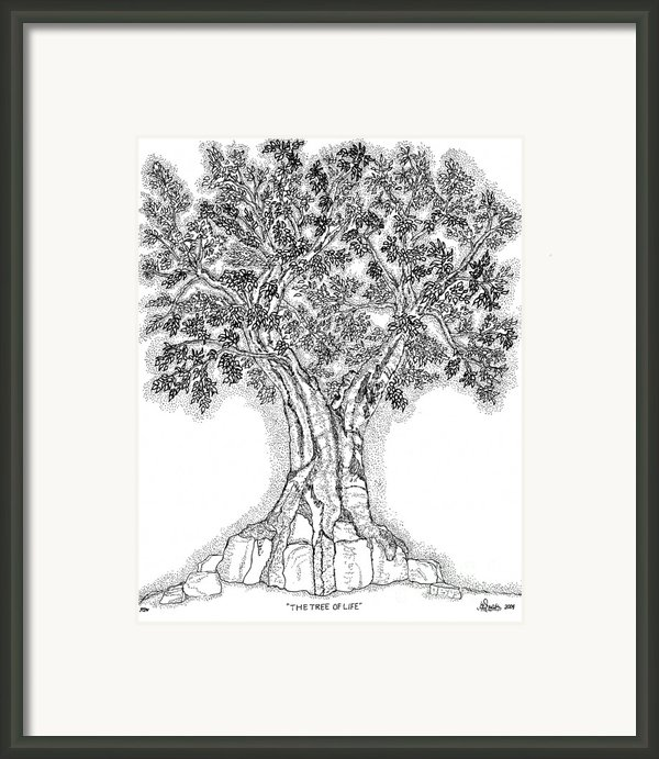 Tree Of Life 1 Framed Print By Glenn Mccarthy Art And Photography