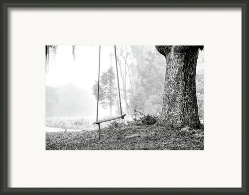 Tree Swing Framed Print By Scott Hansen