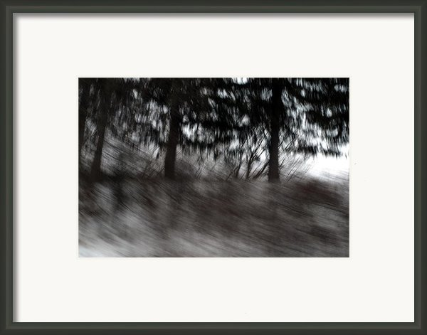 Treescape Framed Print By David Hickey