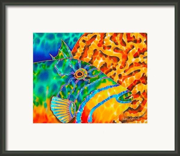 Trigger And Brain Coral Framed Print By Daniel Jean-baptiste