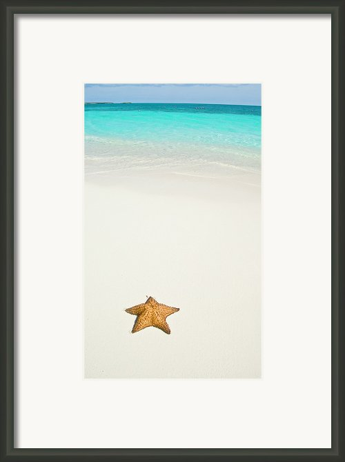 Tropical Beach And Starfish Framed Print By Mehmed Zelkovic