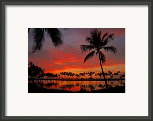 Tropical Sunset Reflections Framed Print By Jennifer Crites