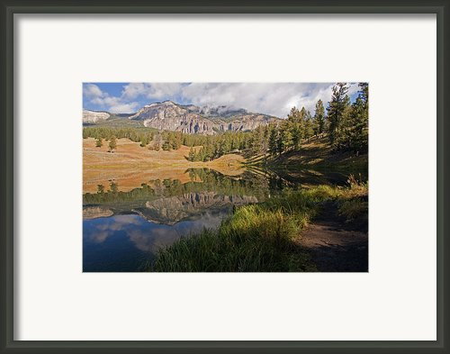 Trout Lake, Yellowstone National Park Framed Print By Dbushue Photography