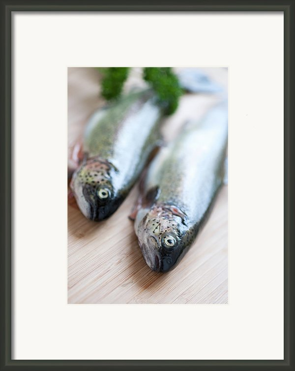 Trouts Framed Print By Carlo A