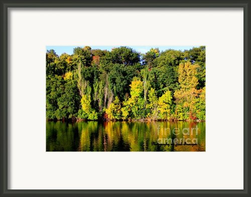 True Colors Of Fall Framed Print By Joshua Fronczak